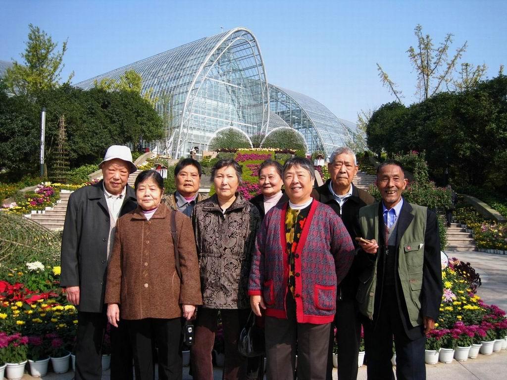南山植物园观赏菊展
